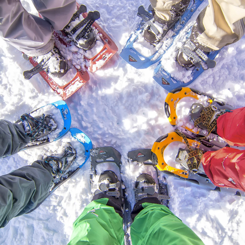 Snowshoeing activity