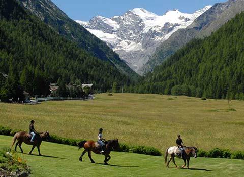 horses-riding-courmayeur-la-thuile-lezione