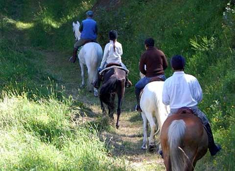 horses-riding-courmayeur-la-thuile-passeggiata